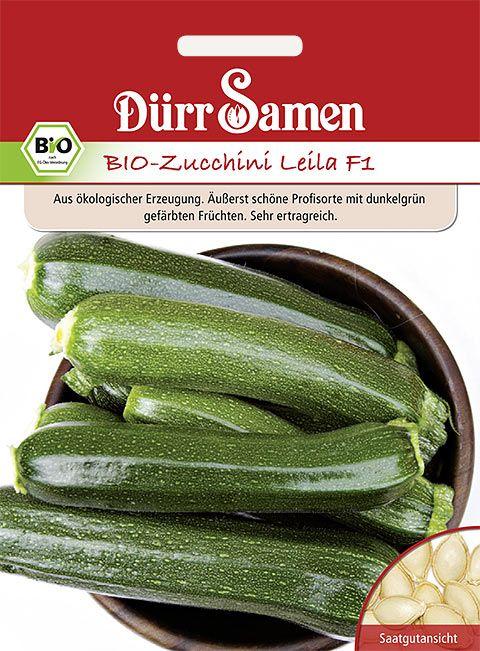 Dürr Samen BIO-Zucchini  Leila F1