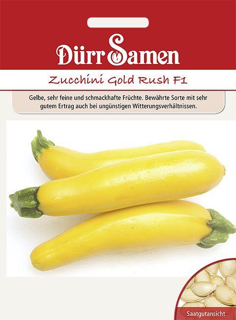 Dürr Samen Zucchini  Gold Rush F1
