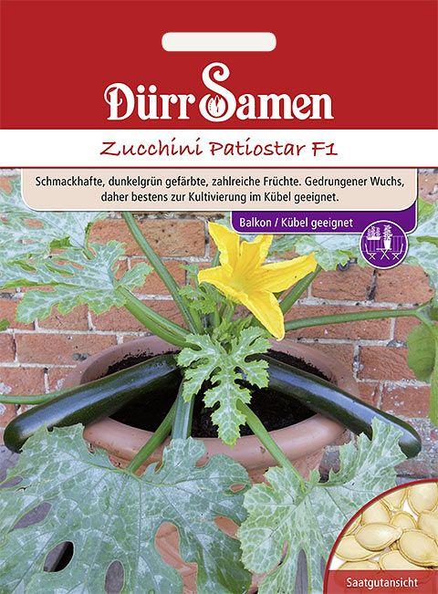 Dürr Samen Zucchini  Patiostar F1