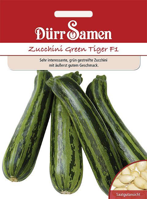 Dürr Samen Zucchini  Green Tiger F1