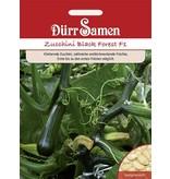 Dürr Samen Zucchini  Black Forest F1
