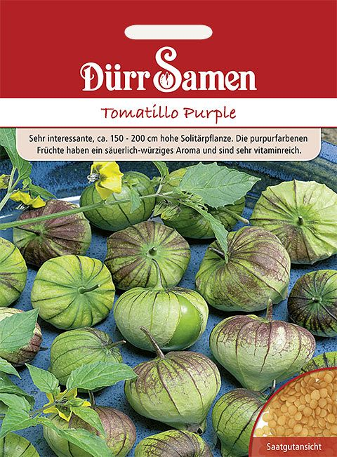 Dürr Samen Tomatillo  Purple