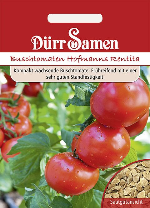 Dürr Samen Buschtomaten  Hoffmanns Rentita