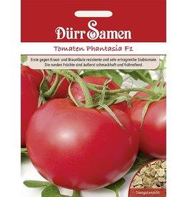 Dürr Samen Tomaten  Phantasia F1