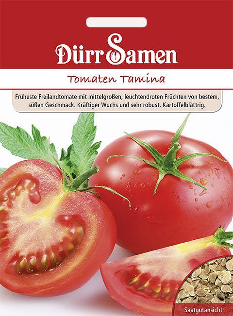 Dürr Samen Tomaten  Tamina