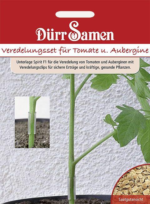 Dürr Samen Veredelungs-Set für Tomaten und Auberginen