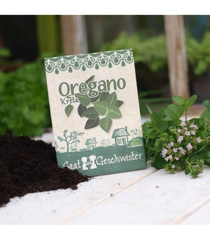 Stadtgärtner Saatgeschwister - Oregano Kreta