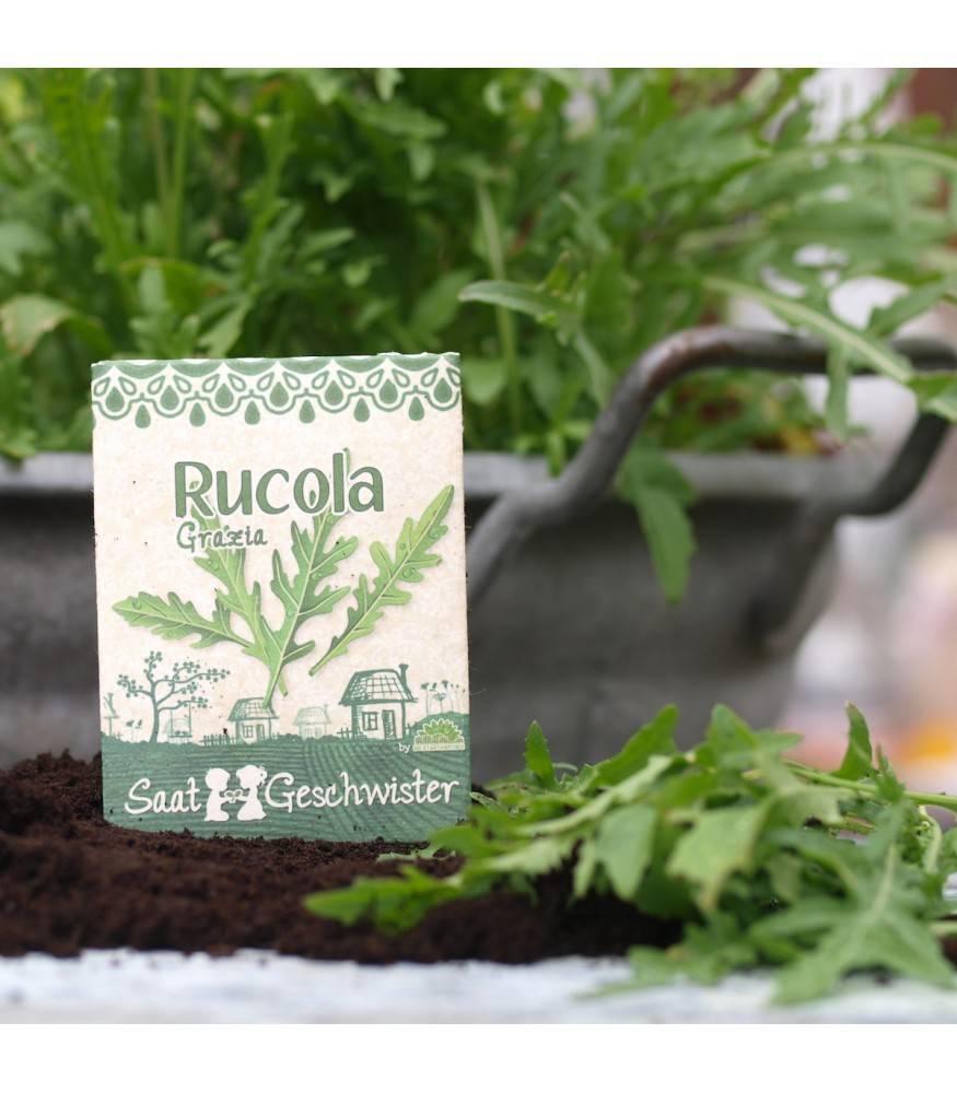 Stadtgärtner Saatgeschwister - BIO Rucola Grazia