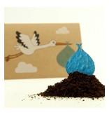 Stadtgärtner Saat-Grußkarte Der Storch - Junge