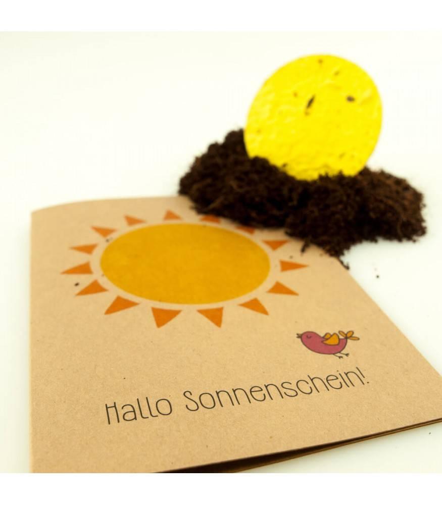 Stadtgärtner Saat-Grußkarte Sonnenschein
