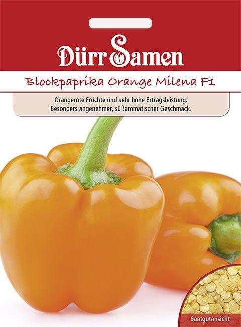 Dürr Samen Blockpaprika Orange Milena F1