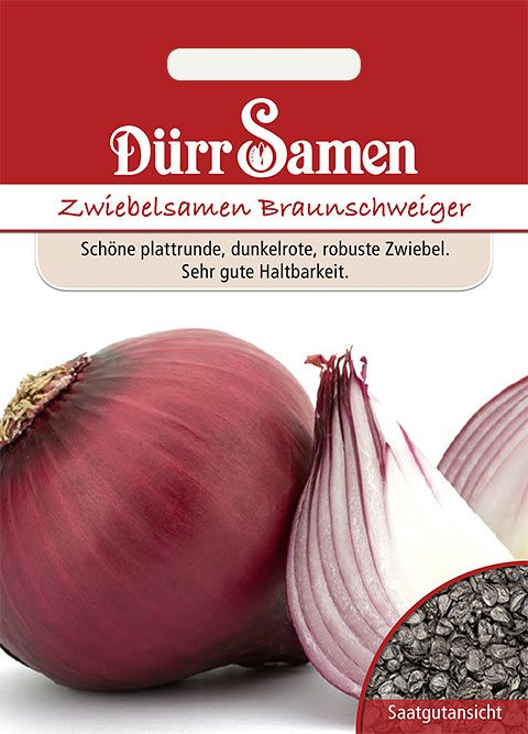 Dürr Samen Sommerzwiebeln  Braunschweiger
