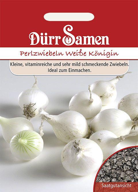 Dürr Samen Perlzwiebeln  Weiße Königin