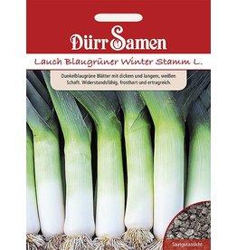 Dürr Samen Lauch  Blaugrüner Winter Stamm L.
