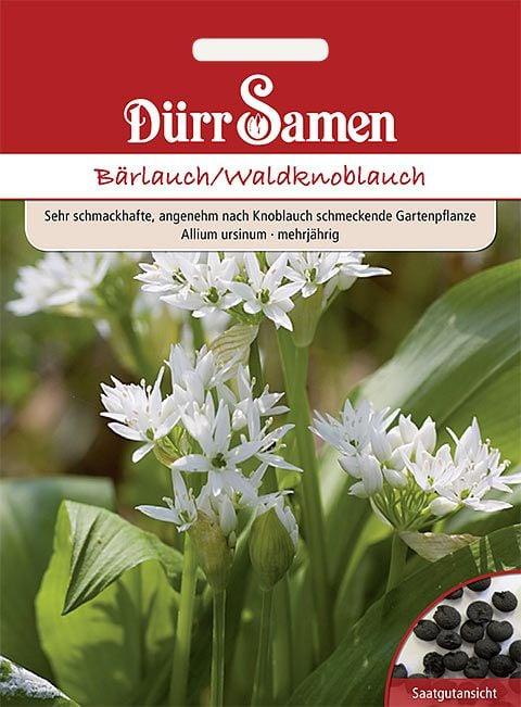 Dürr Samen Bärlauch/Waldknoblauch