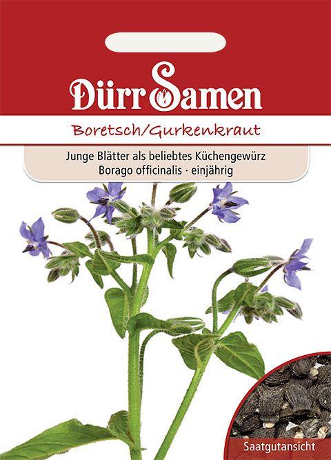 Dürr Samen Boretsch/Gurkenkraut