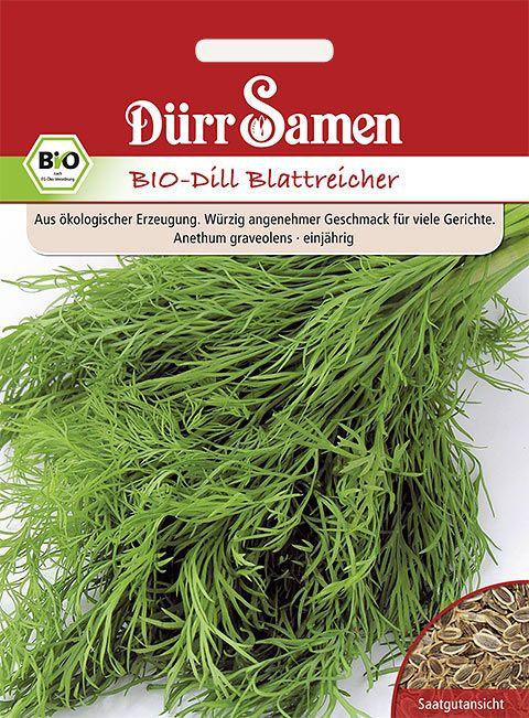 Dürr Samen BIO-Dill blattreicher