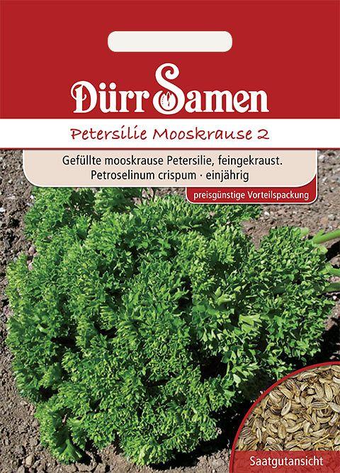 Dürr Samen Petersilie  Mooskrause 2 (Vorteilspackung)
