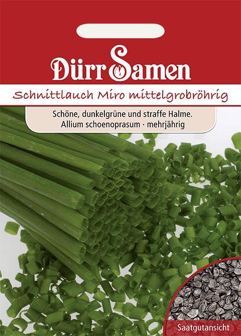 Dürr Samen Schnittlauch  Mittelgrobröhrig Miro