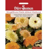 Dürr Samen Ringelblume  Fiesta Gitana Mischung, einjährig, 30cm