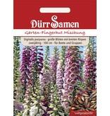 Dürr Samen Garten-Fingerhut zweijährig, 100cm