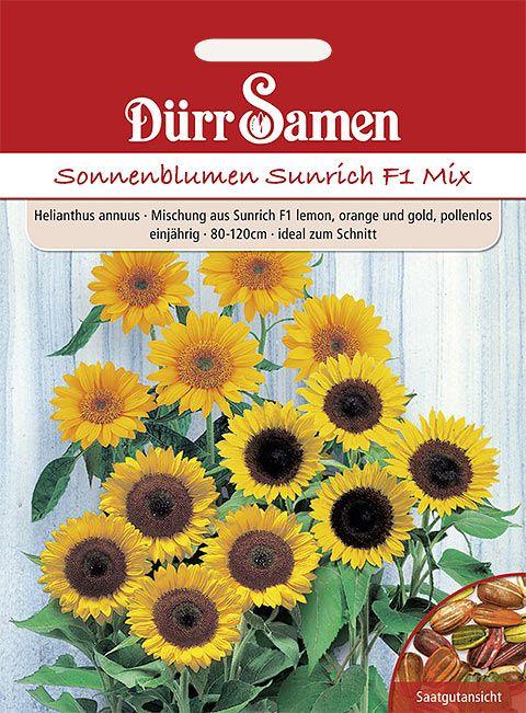 Dürr Samen Sonnenblume  Sunrich F1 Mix, lemon, orange und gold, einjährig, 80–120cm