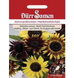 Dürr Samen Sonnenblume  Herbstschönheit, Prachtmischung, einjährig, 200cm