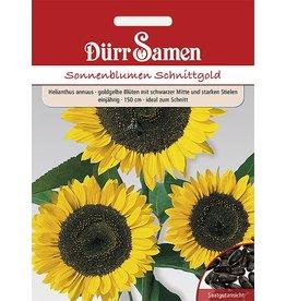 Dürr Samen Sonnenblume  Schnittgold, goldene Blüten mit schwarzer Mitte, einjährig, 50cm