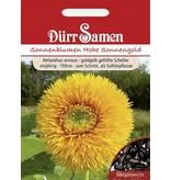 Dürr Samen Sonnenblume  Hohe Sonnengold, goldgelb gefüllt, einjährig, 150cm