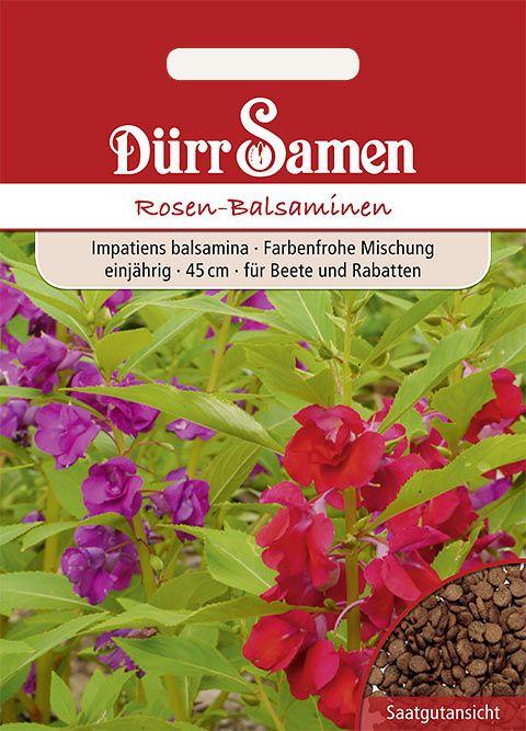 Dürr Samen Rosen Balsaminen Mischung, einjährig, 45cm