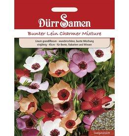 Dürr Samen Bunter Lein Charmer Mix, einjährig, 45cm
