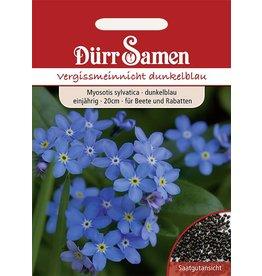 Dürr Samen Vergissmeinnicht  Blau, einjährig, 20cm