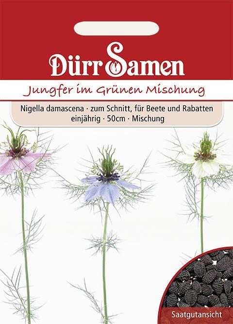 Dürr Samen Nigella Bunte Mischung, einjährig, 50cm