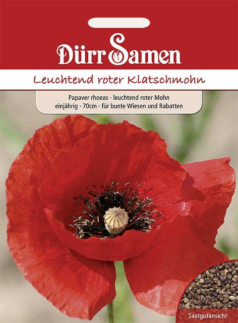 Dürr Samen Mohn Leuchtend rot, einjährig, 70cm