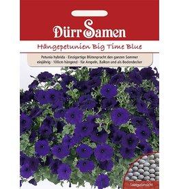 Dürr Samen Petunien  Big Time Blue, dunkelblau, einjährig, 100cm
