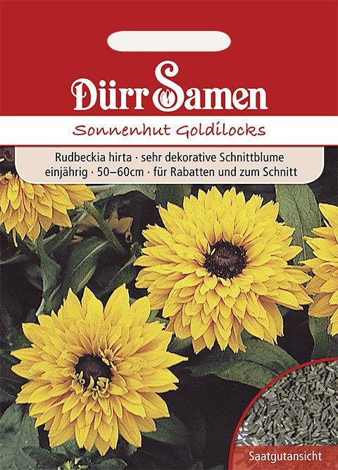Dürr Samen Sonnenhut  Goldilocks, hoch gefüllte orange Blüten, einjährig, 50cm