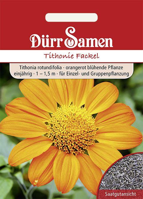 Dürr Samen Tithonie Fackel Orangerot, einjährig, 1 – 1,5m