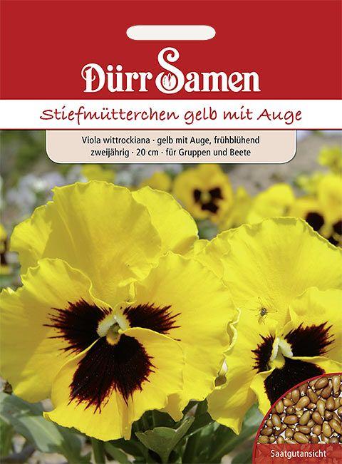 Dürr Samen Stiefmütterchen  Gelb mit Auge, zweijährig, 20cm