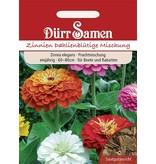 Dürr Samen Zinnien  Dahlienblütige, Prachtmischung, einjährig, 60–80cm