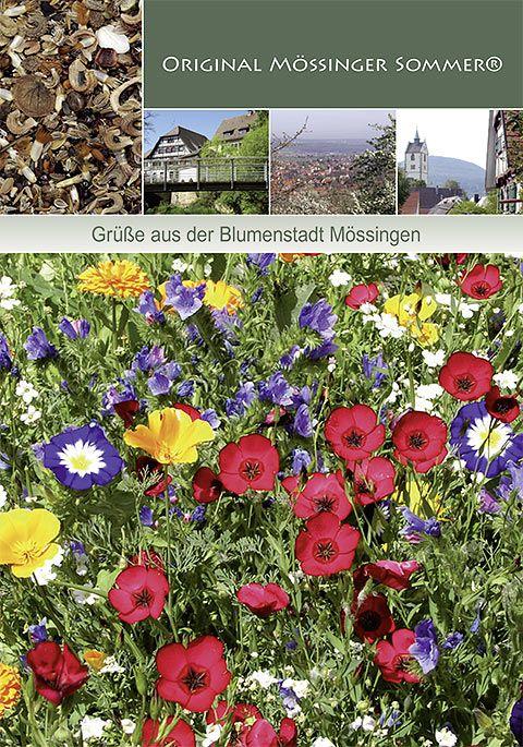 Dürr Samen Blumenmischung Original Mössinger Sommer 20m², einjährig, 60-80cm
