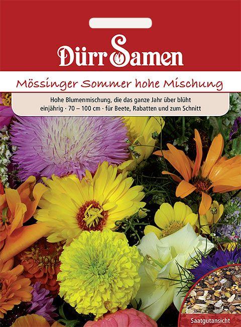 Dürr Samen Blumenmischung Mössinger Sommer hoch, einjährig, 70–100cm