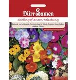 Dürr Samen Blumenmischung Schlingpflanzenmischung, einjährig, 200cm