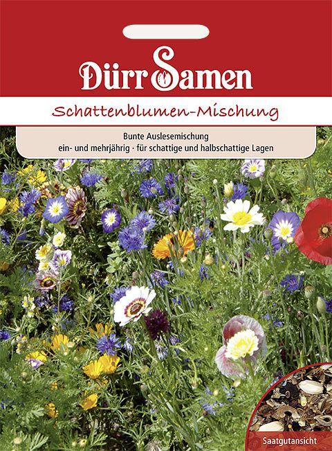 Dürr Samen Blumenmischung Schattenblumen, ein- und mehrjährig, 20-30cm