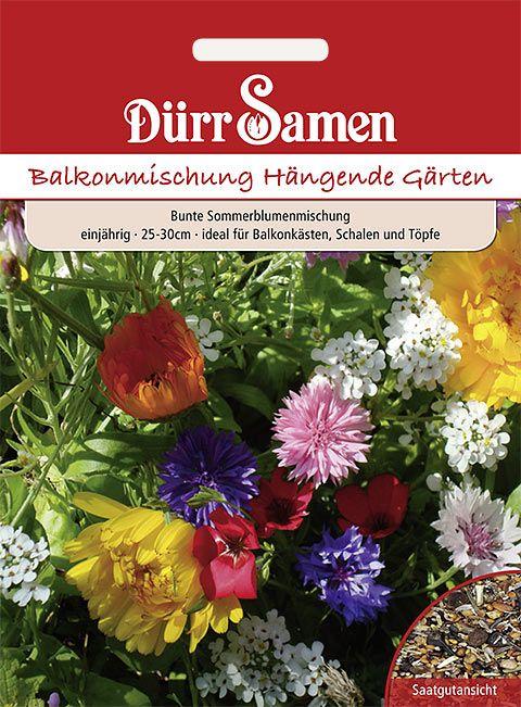 Dürr Samen Blumenmischung Balkon-Mischung, einjährig, 25-30cm