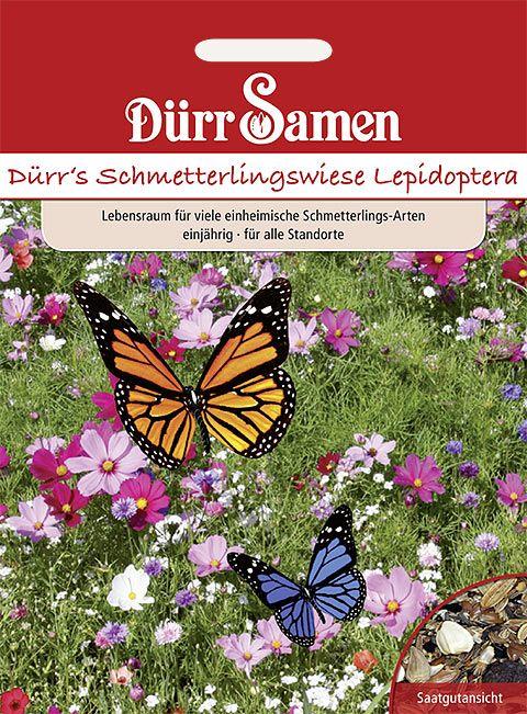 Dürr Samen Blumenmischung Schmetterlingswiese, einjährig, 50cm