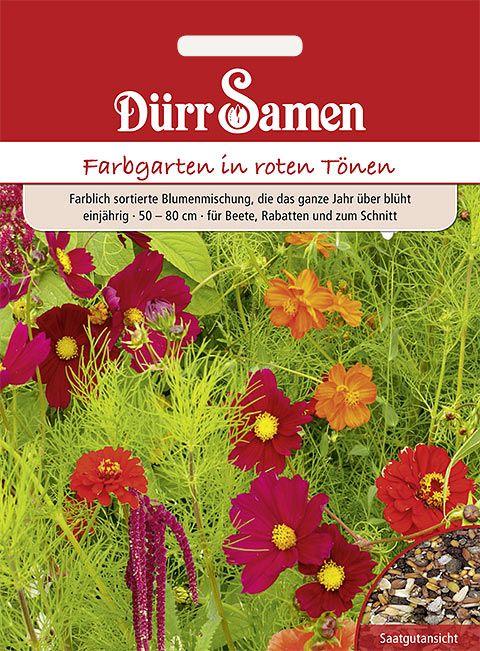 Dürr Samen Blumenmischung Traumgarten rote Töne, einjährig, 50–80cm