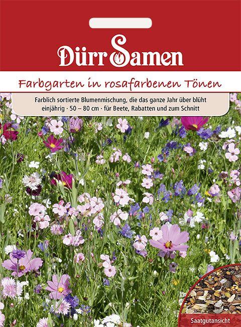Dürr Samen Blumenmischung Traumgarten pinkfarbene Töne, einjährig, 50–80cm