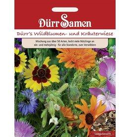Dürr Samen Blumenmischung Blumen- und Kräuterwiese, ein- und mehrjährige Arten, 40-60cm