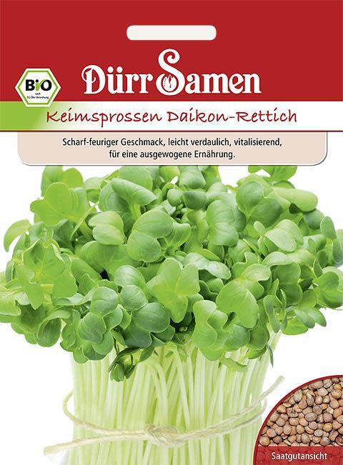 Dürr Samen BIO-Keimsprossen  Daikon-Rettich