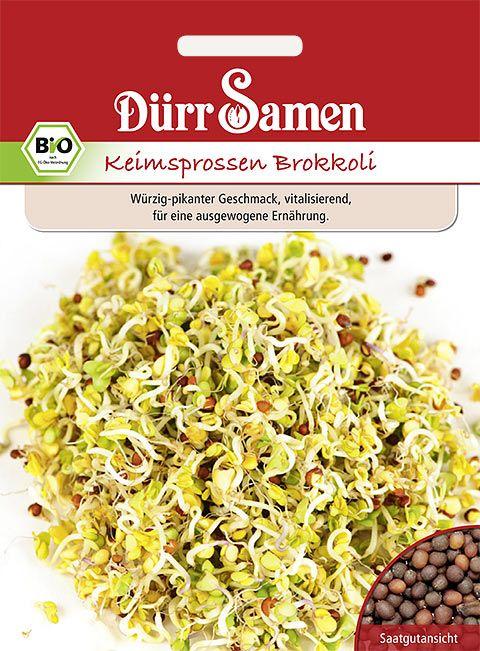 Dürr Samen BIO-Keimsprossen  Brokkoli